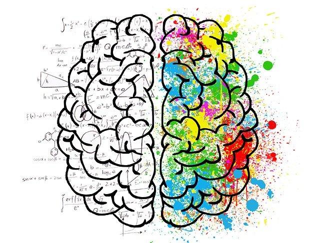מוח ימין ושמאל
