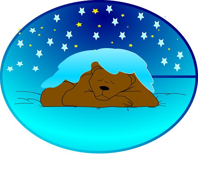 תמונה דוב מאוייר ישן
