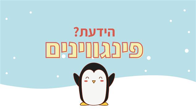 הידעת - הפינגווינים